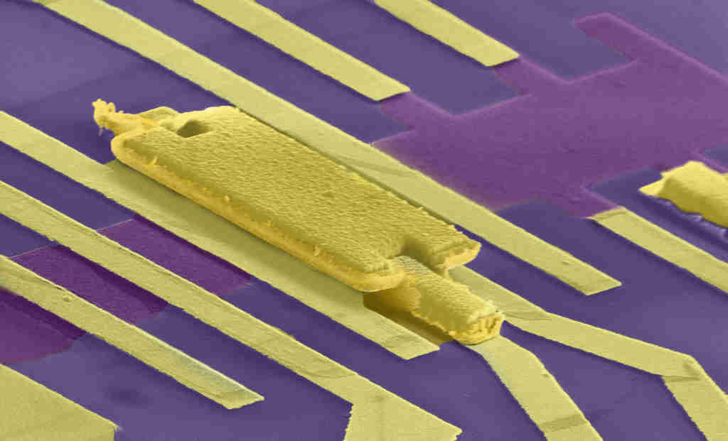 A false-coloured image of a graphene device. Graphene devices are made using electron lithography, where an electron beam is used to draw patterns on a surface. Then metals or other materials are deposited. The dark blue surface is the substrate, the purple region is graphene, and all but the central gold region are contacts through which current passes. The central gold region is a gate, which can apply an electric field on to graphene to change the number of electrons in it (Image: Low-Temperature Nanoelectronics Group, Department of Physics, IISc)